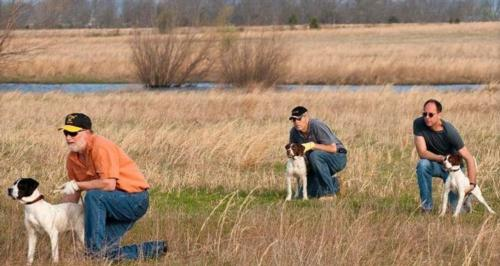 2014 Bird Dog Training Seminar Schedule