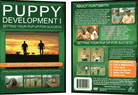 Puppy Development I Setting Your Pup Up For Success